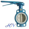 Manual Cast Iron Wafer Type Concentric Butterfly Valve