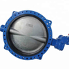 Gear Operated Flanged Soft Seal Concentric Butterfly Valve