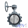 Ductile Iron Lug Type Gear Operated Water Centric Butterfly Valve